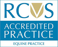RCVS Equine Practice