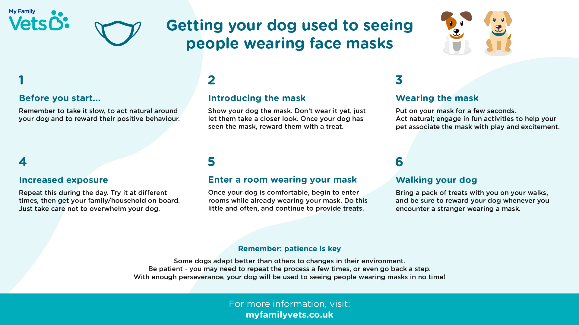 infographic detailing steps to getting dogs used to seeing masks