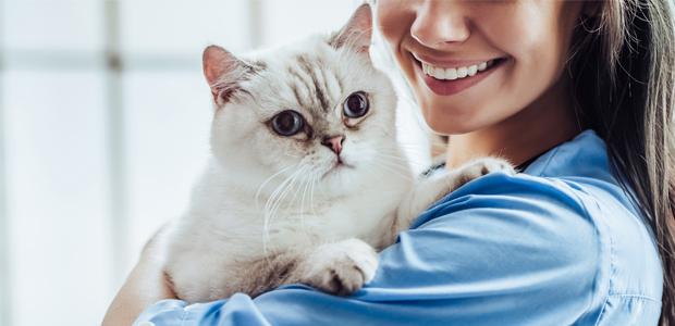 smiling vet holding a white cat
